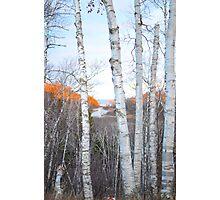 Fall at Gooseberry Falls Photographic Print