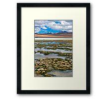 Laguna Hedionda2. Framed Print