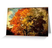 Autumn colors fade away © Greeting Card