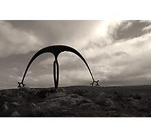 Sculptural Curve Photographic Print