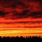 Cloudy Sunset in New York City  by Alberto  DeJesus