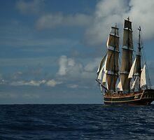 The HMS Bounty by Madzia Bryll