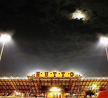 Hutto Hippo Stadium by Trish Mistric