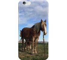 Bored Horses iPhone Case/Skin