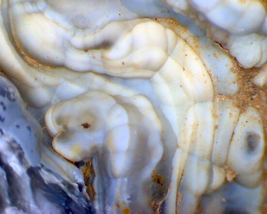 Alien Bones (Quartz Geode) by Stephanie Bateman-Graham