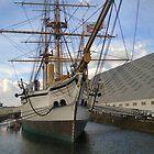 HMS GANNETT 1878 by Shoshonan