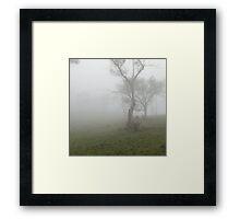 Mistey Trunk Framed Print