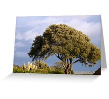 Oak by the sea Greeting Card