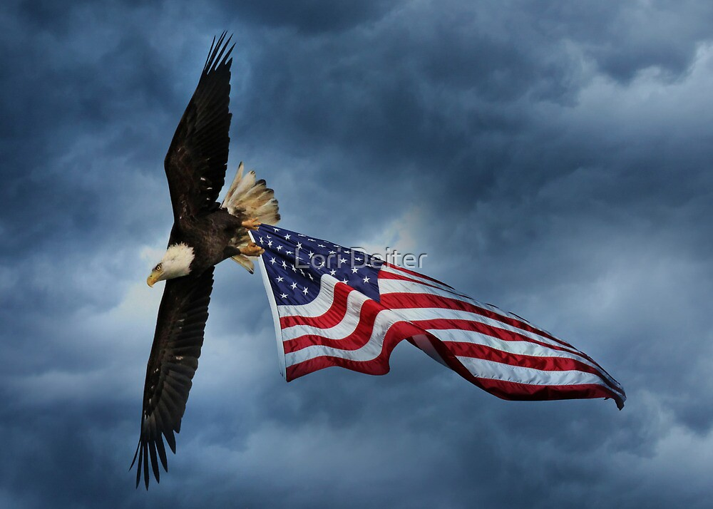 Hold on to Freedom by Lori Deiter