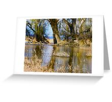 Willow Creek Reservoir Greeting Card