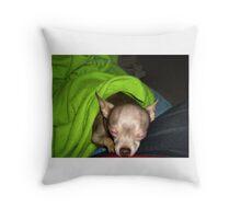 Lexie Sleeping Throw Pillow