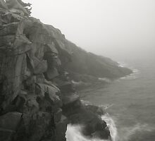 Sea Cliffs in the Mist by Roupen  Baker