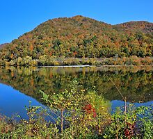 West Virginia Autumn by Lanis Rossi