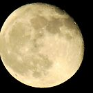 Halloween Full Moon by Stacy Brooks Photography