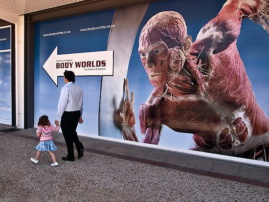 Body Worlds Exhibition by awefaul
