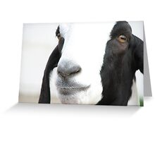 Georgie Goat Greeting Card
