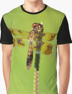 Dragonfly 3 Graphic T-Shirt