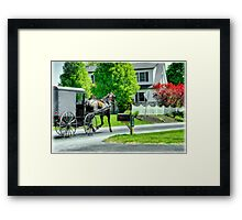 Trotting Along... Framed Print