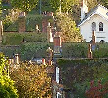 Roof tops & chimney pots . by Antoinette B