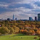 I have conversed with the spiritual sun. I saw him on Primrose Hill by Paul Richards