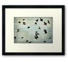 Let's fly Framed Print
