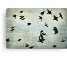 Let's fly Canvas Print