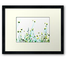 Queen Anne's Lace Field - Yellow Framed Print