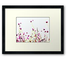 Queen Anne's Lace Field - Pink Framed Print