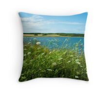Cheticamp, Nova Scotia Throw Pillow