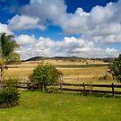 Rural View by Sherrianne Talon