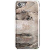 Asian Elephants iPhone Case/Skin
