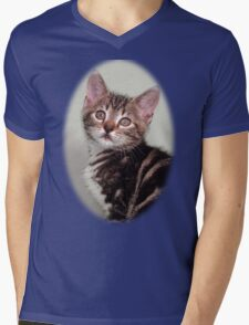 Cute kitten design Mens V-Neck T-Shirt