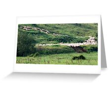 Follow the Leaders-Monterosi, Italy Greeting Card