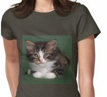 Very cute long hair tabby kitten Womens Fitted T-Shirt