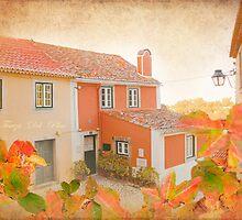 casa do terreirinho by terezadelpilar~ art & architecture