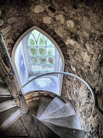 The Castle (10)    Window by Larry Davis