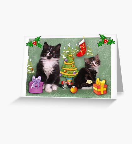 Cute kittens Christmas card Greeting Card