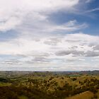 Ranges Kinglake Reserve Victoria Melbourne by David Toolan