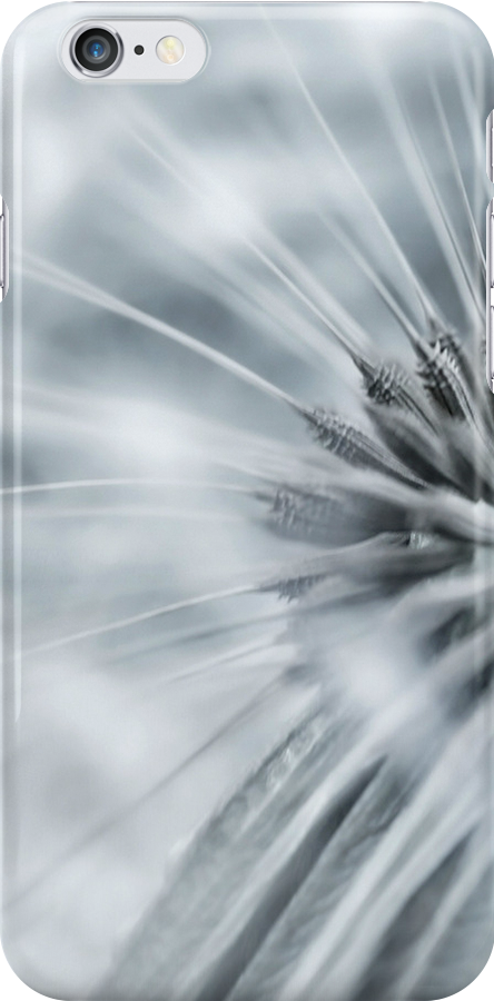 Modern Design Apple iPhone, Samsung and iPod Touch Dandelion Whisper Case Cover by David Alexander Elder