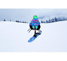 Snowboarding Cat Photographic Print