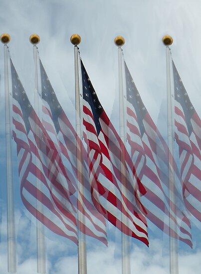 Five Flags by Rosalie Scanlon