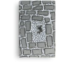 stone brick sidewalk Canvas Print