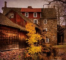 Stover Myers Mill by louise reeves