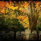 Autumn in the Cemetery by Lynnette Peizer