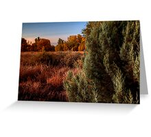 Fall Behind Greeting Card