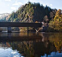Gorge's Trestle by martinilogic