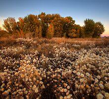 Autumn Crowds by Bob Larson