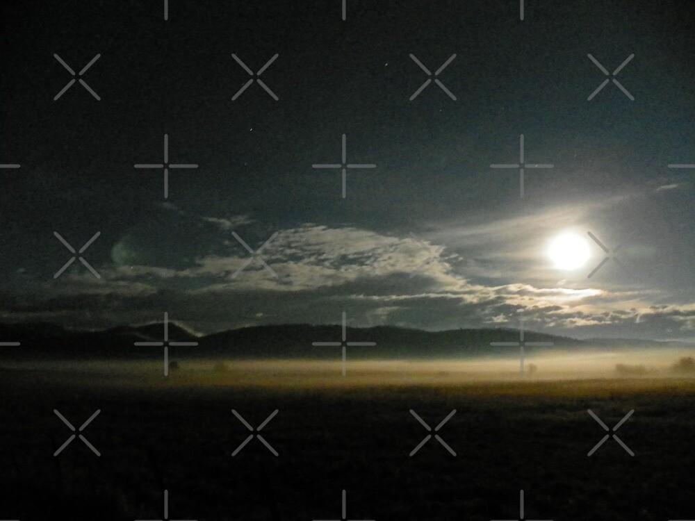 De Ja Vu Full Moon by Betty  Town Duncan