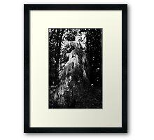 Mt. Baker National Forest, Washington Framed Print