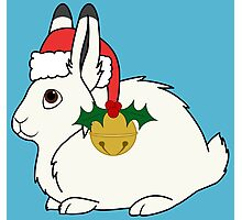 White Arctic Hare with Santa Hat, Holly & Gold Bell Photographic Print